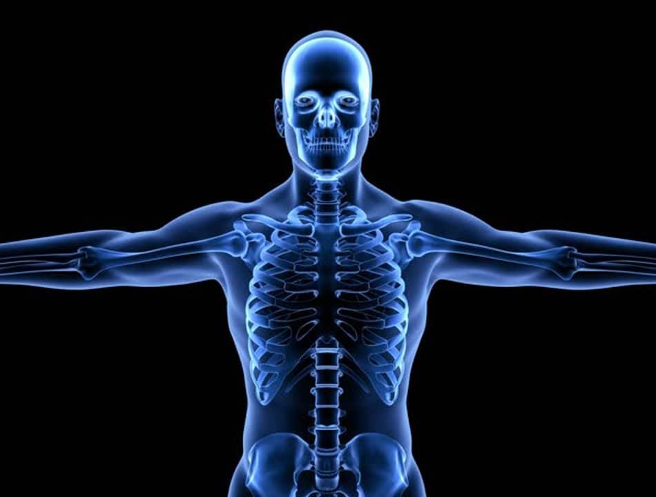Imagem de corpo humano transparente mostrando o esqueleto